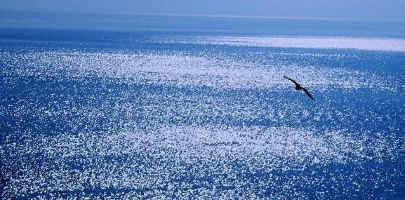 Rifugiati: numerosi i soccorsi nel Mediterraneo, ma è scarso l'interesse dei tg