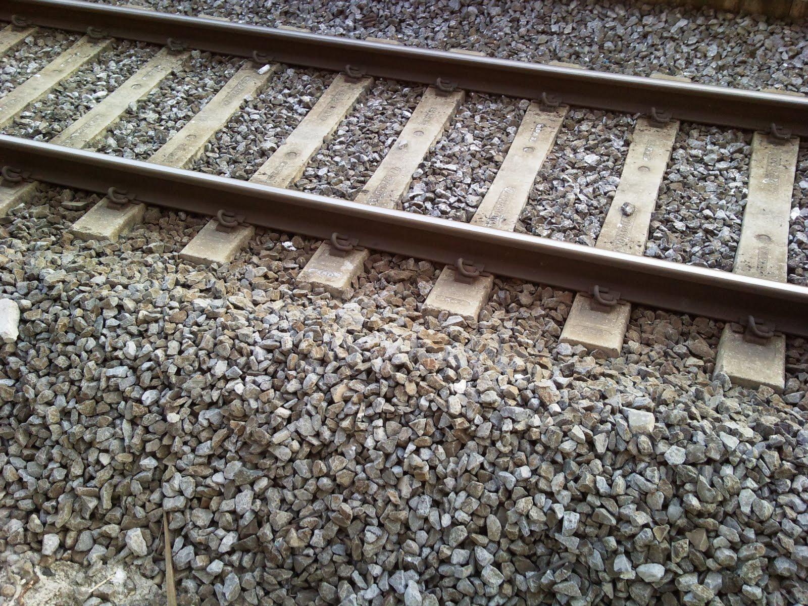 Puntando verso Monaco. Il racconto del viaggio in treno da Roma al confine con l'Austria
