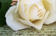 Giornalisti stranieri: una rosa bianca contro una vecchia legge