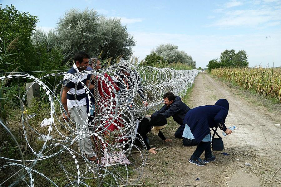 Propaganda e teste di maiale: la guerra dell'Ungheria ai rifugiati