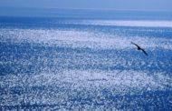 Amnesty International: Fra il diavolo e il mare profondo. L'Europa abbandona rifugiati e migranti nel mar Mediterraneo centrale