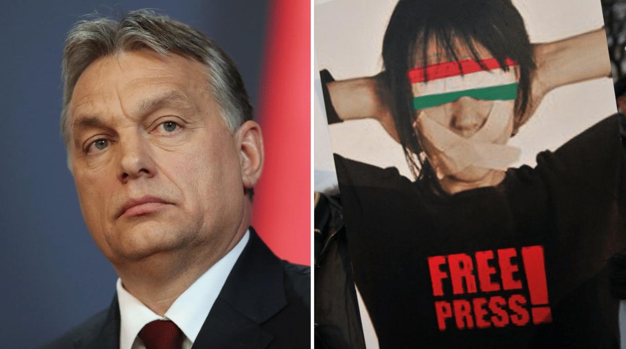 """Ungheria, insieme dentro e fuori la rete affinché il """"Virus dell'intolleranza"""" sia isolato"""